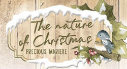 The Nature of Christmas