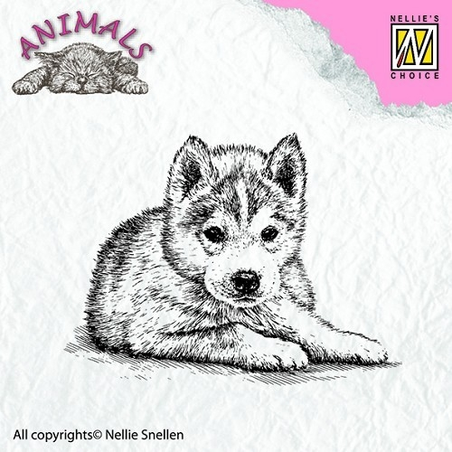 Clear stamps - Animals - Puppy