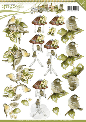 Springtime- knipvel young birds