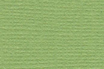 Bazzil canvas leapfrog