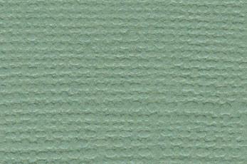 Bazzil canvas fern