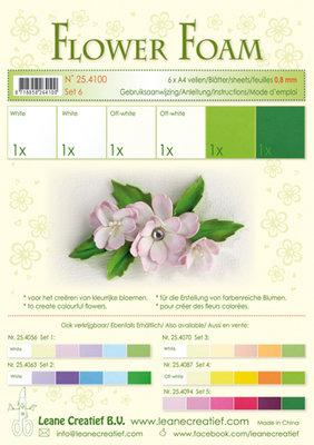 LCR25.4100 Flower foam assortment set 6 white - green
