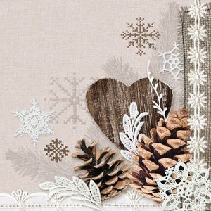 Servetten 5st - Winter nature 33x33cm Ambiente